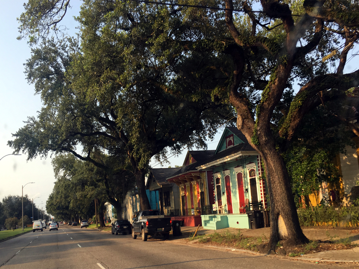 Homes in New Orleans