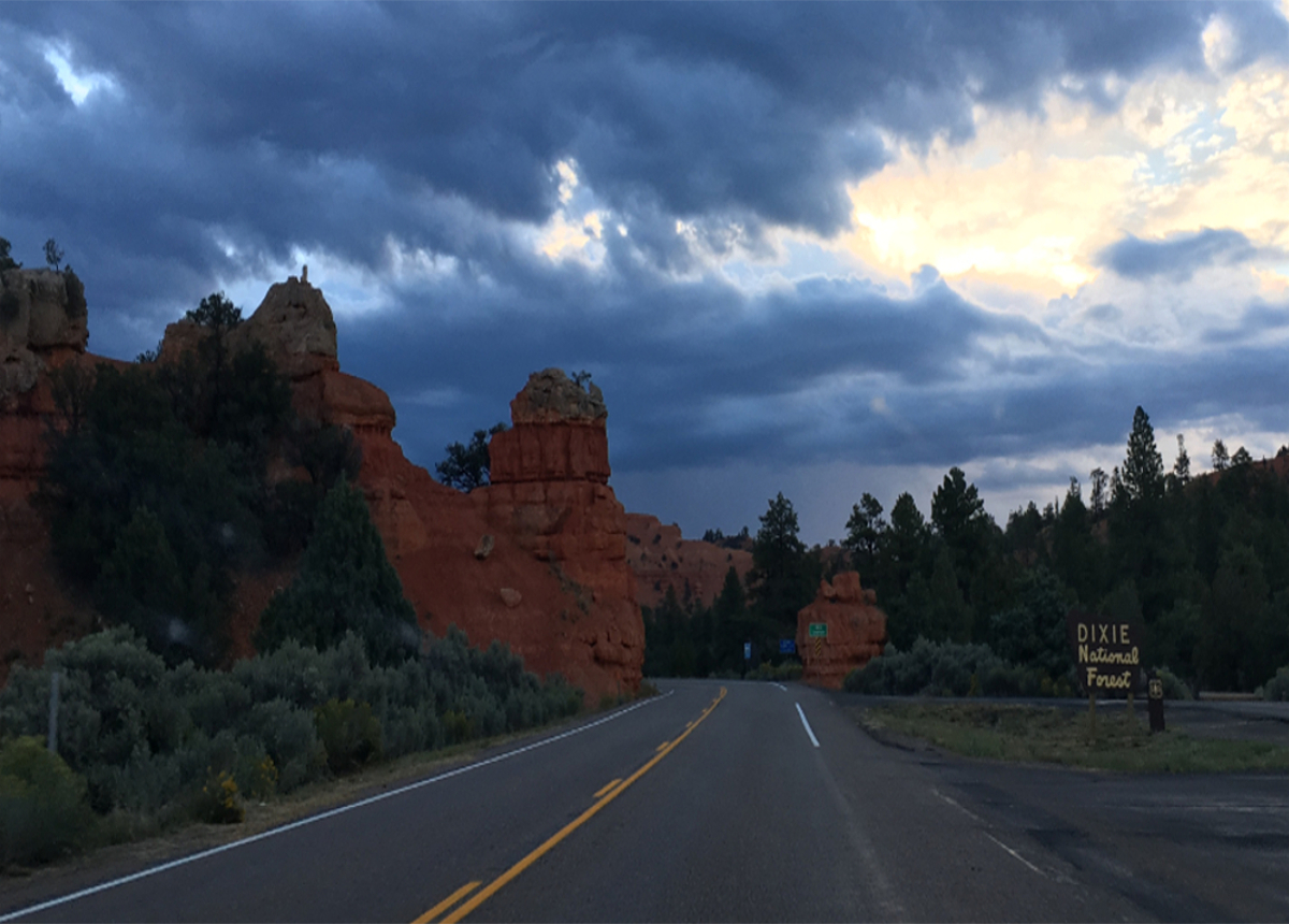 Bryce Canyon-Dixie National Forest
