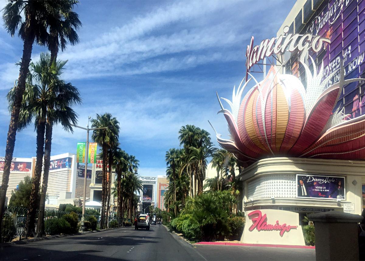 Las Vegas atrakcje-Hotel Flamingo