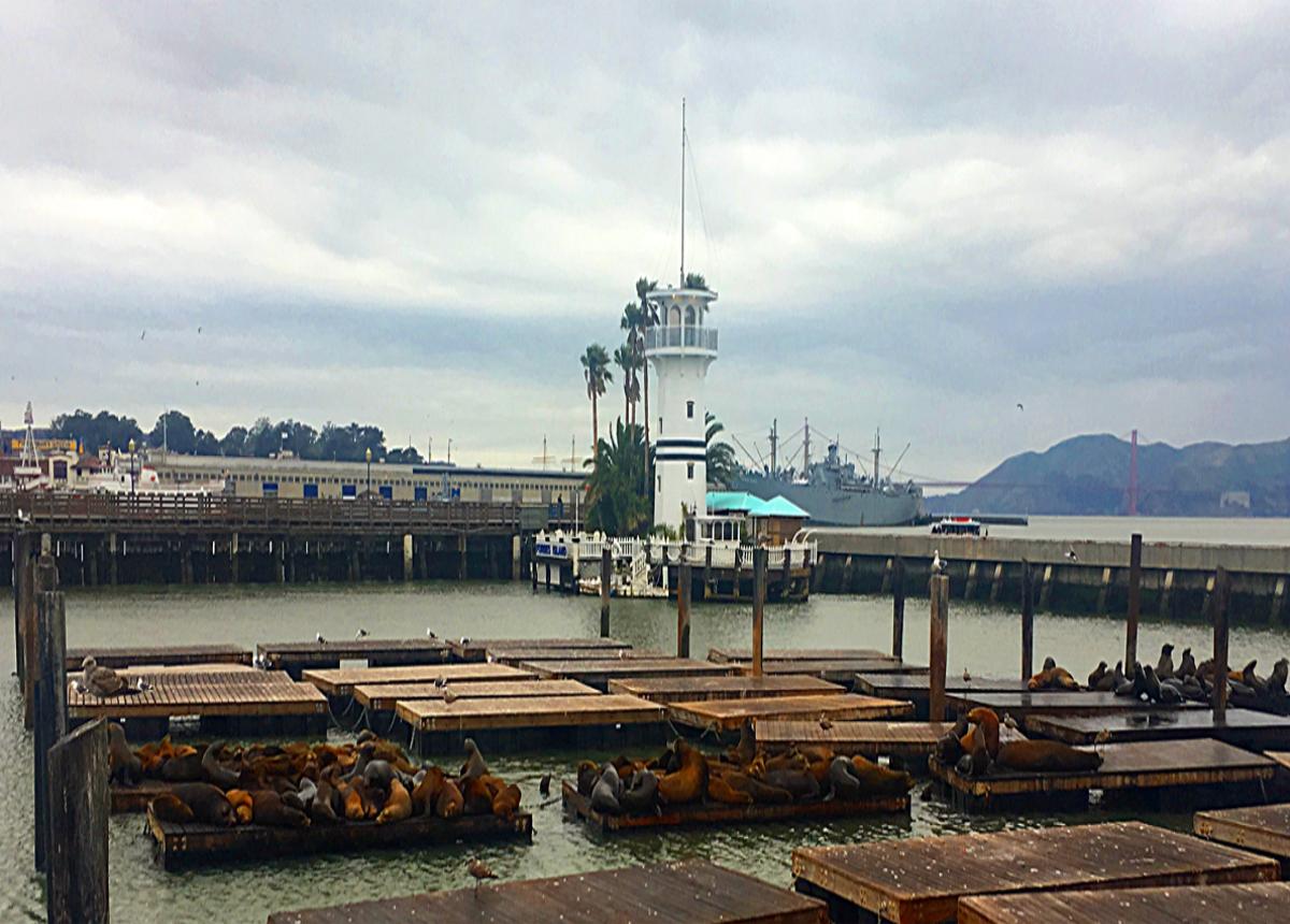 San Francisco attractions-Pier 39