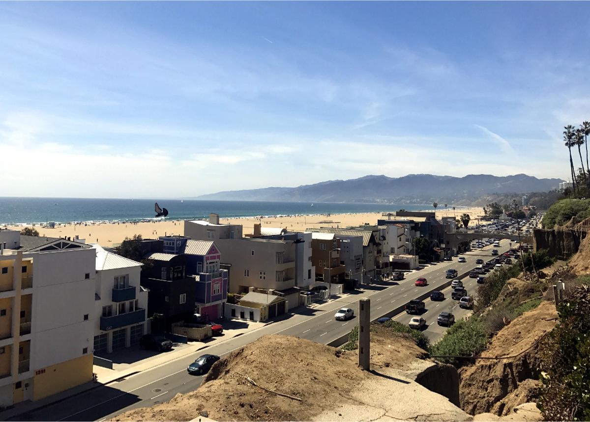 Homs at Santa Monica Beach