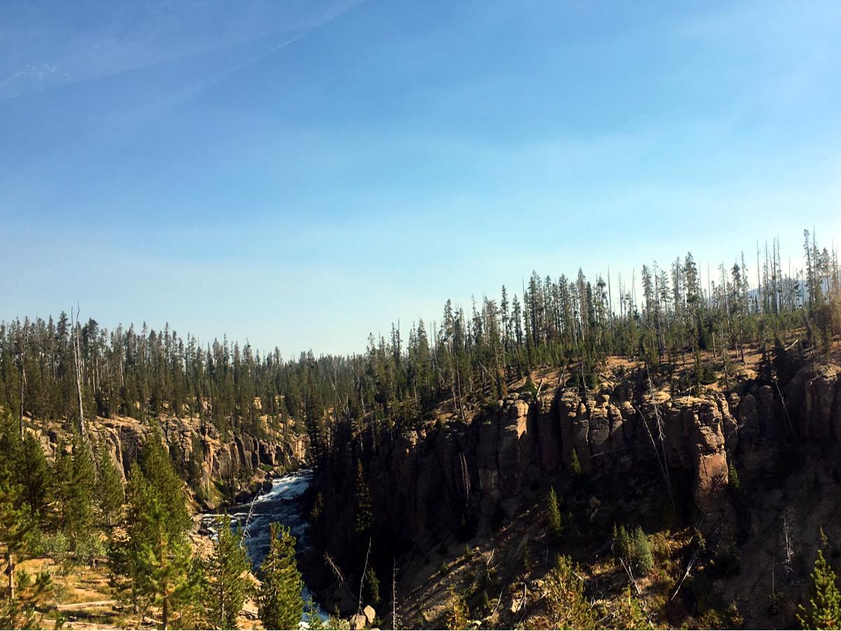 Strumień w Park Narodowym Yellowstone