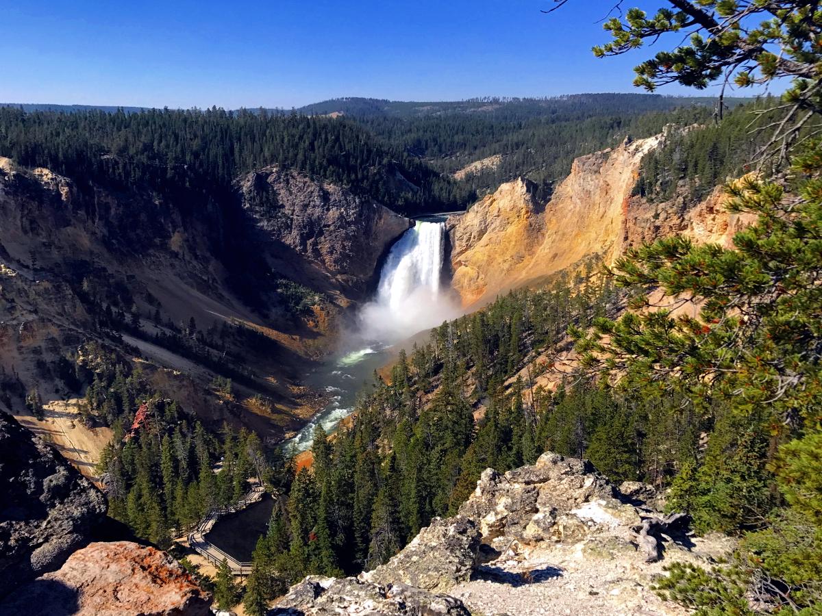 Park Narodowy Yellowstone-Lower Falls