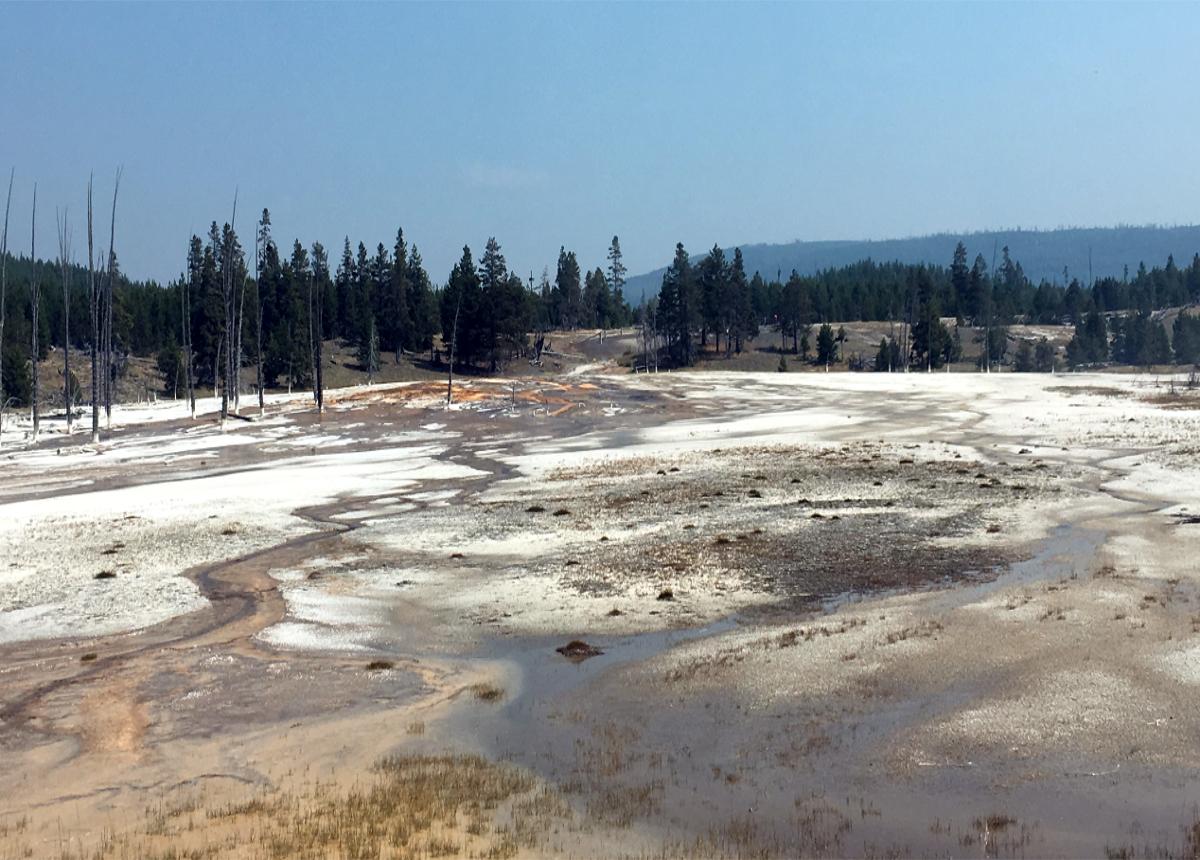 Yellowstone Black Sand Basin
