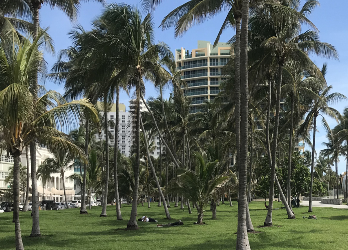 Miami Beach Homelessness