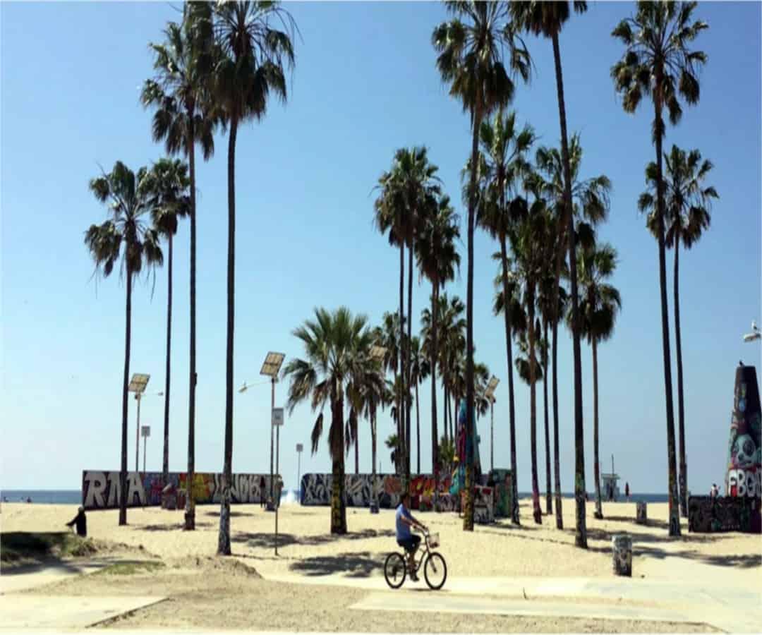 Los Angeles attractions-Venice Beach